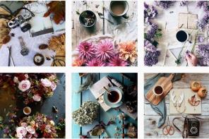 Cuentas para seguir en Instagram: flores y café en imágenes en la cuenta de Coffee and Seasons en Instagram