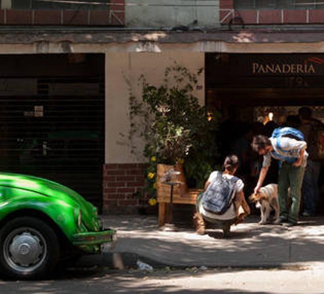 La Roma, barrio hipster de Ciudad de Mexico2