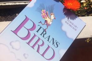 Trans Bird, la historia de un pajarito que encuentra su camino