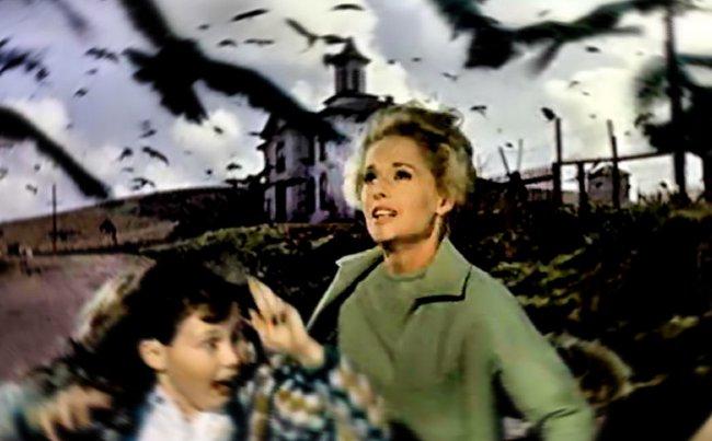 La protagonista de Los pájaros es un buen disfraz de halloween