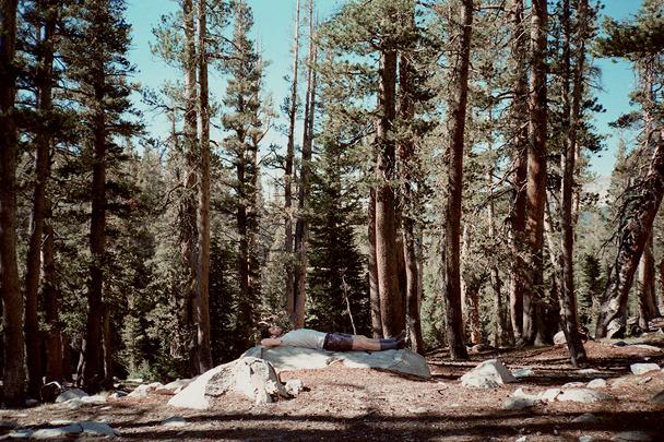 fotografías en la naturaleza-3