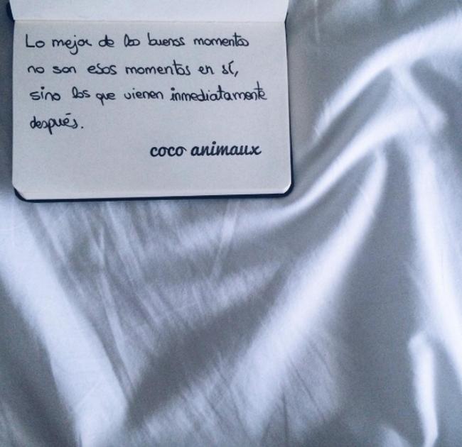 micropoemas en Instagram cocoanimaux 2